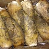 春爛漫!鹿児島から早堀りの国産筍が入荷中です。