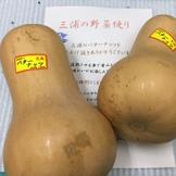 バターナッツスクワッシュ(三浦産)